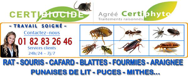 Deratisation Neuville sur Oise 95000